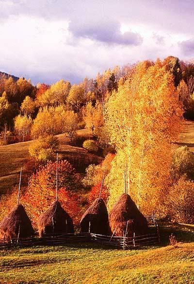 Transylvania Live Transylvanian Fall Foliage Special Tour For Seniors